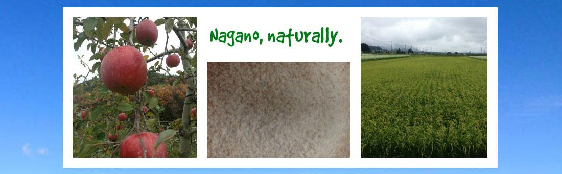 Nagano, Naturally Logo