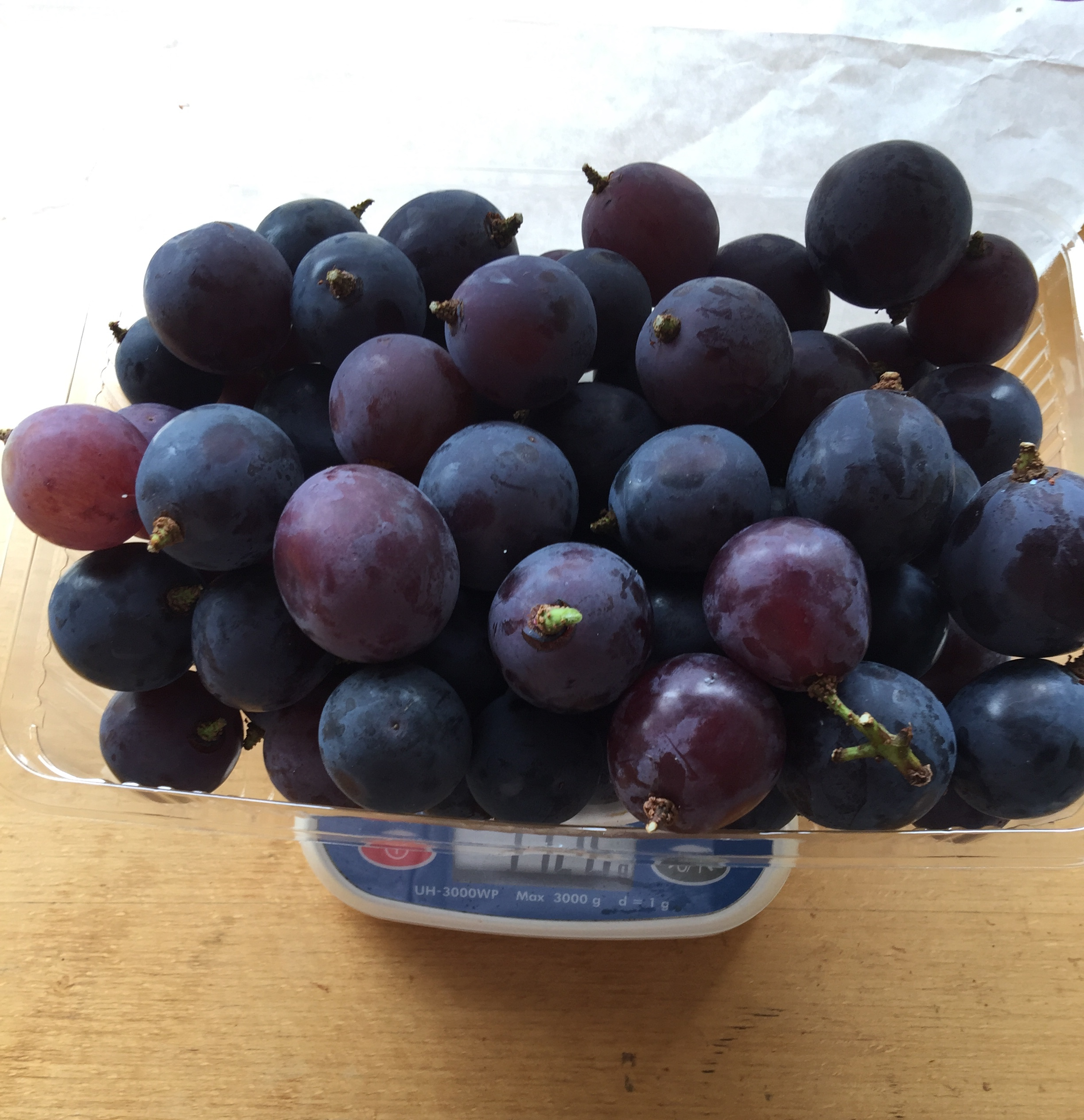 baker's special- Pione grapes not organic 1 kilo!